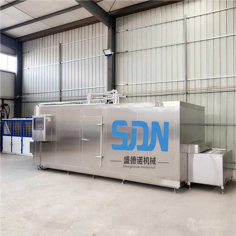 SDN-100海参速冻机厂家 质量保证
