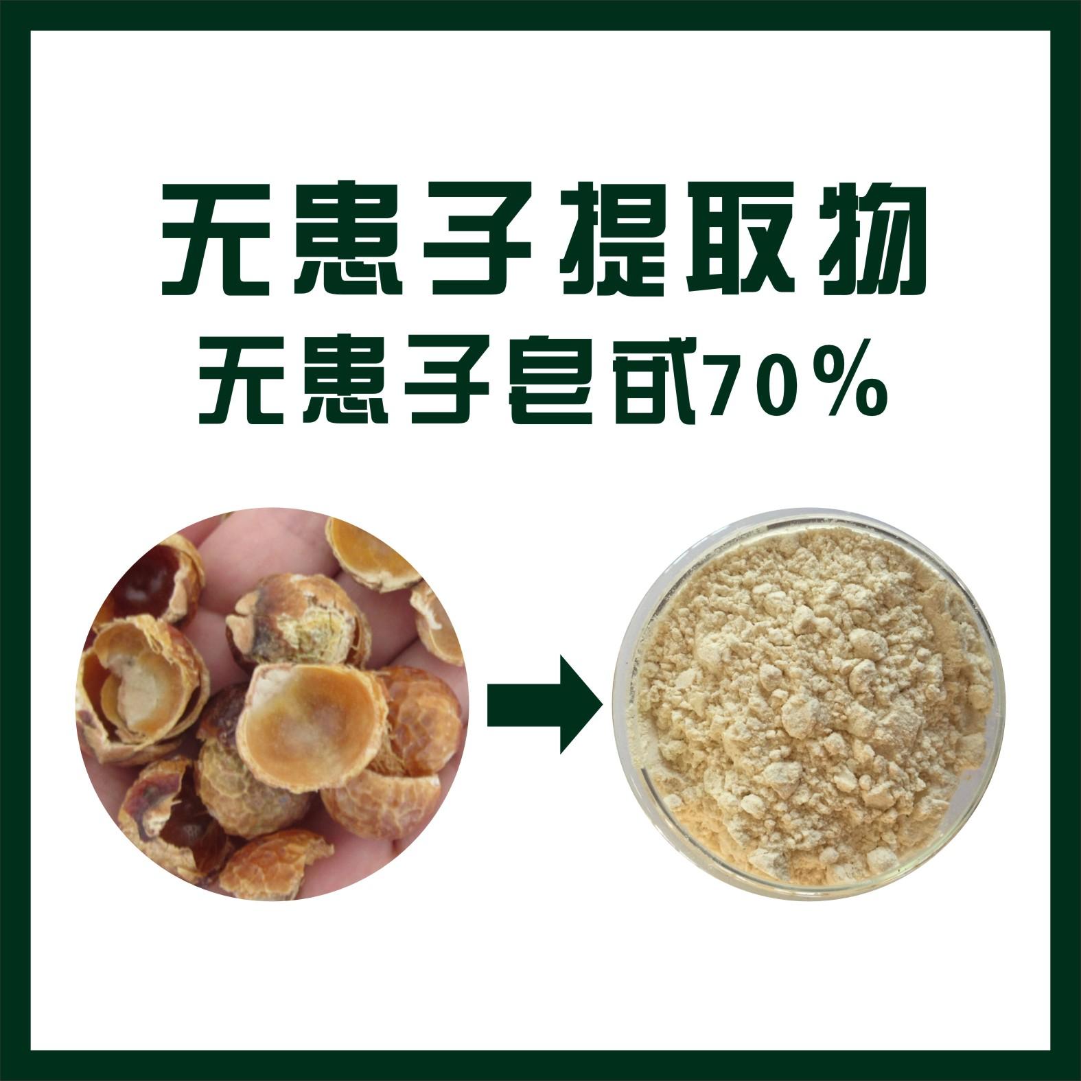 专业厂家生产无患子提取物 无患子皂甙70% 洗涤用品原料 发泡济