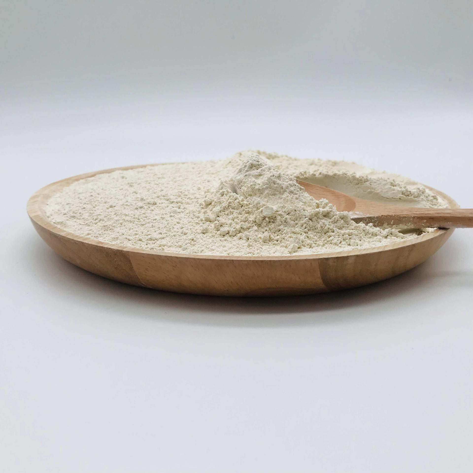 大米蛋白大米提取物工厂现货