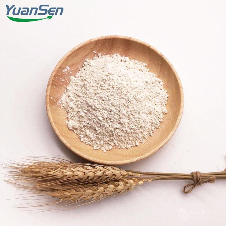 食品级300目 80%蛋白含量大米蛋白