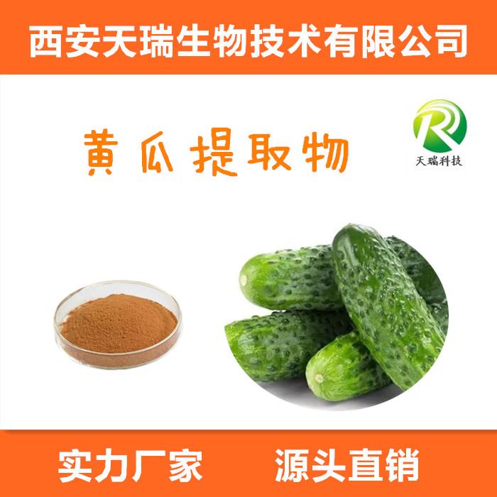 黄瓜粉98% 速溶黄瓜粉
