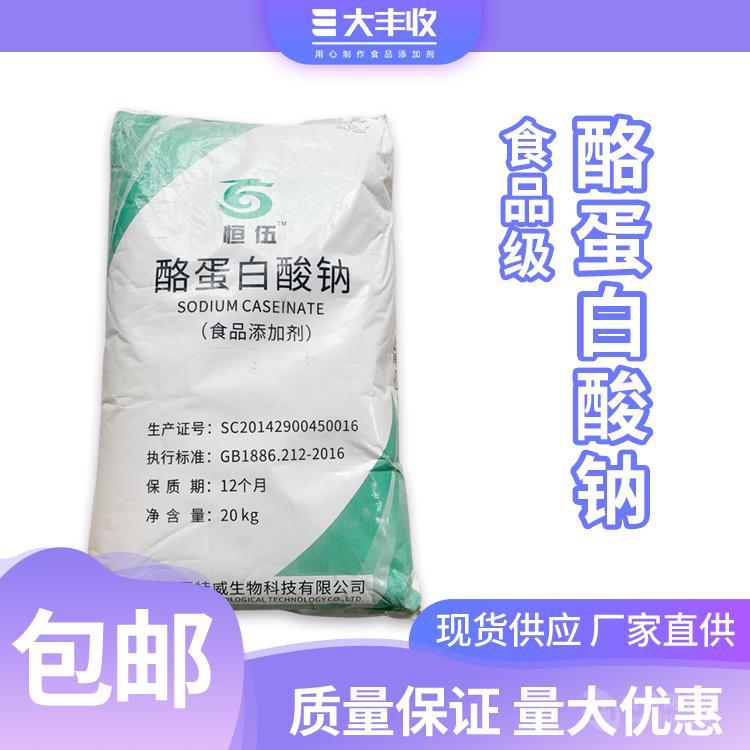 热销酪蛋白酸钠 食品级 酪朊酸钠 郑州天顺 质量保证 量大从优