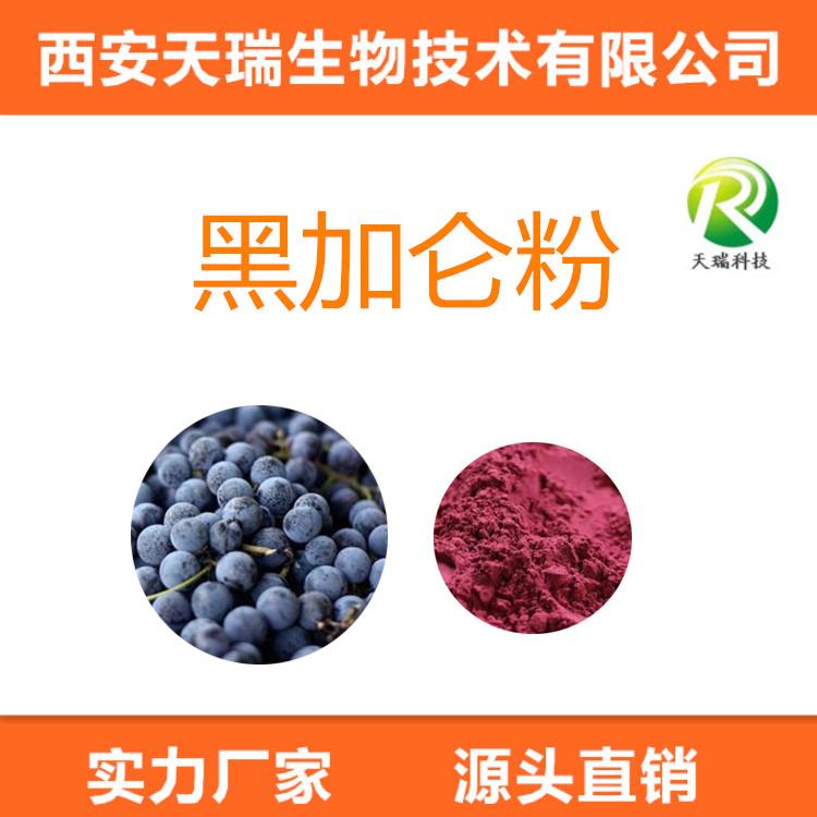 速溶黑加仑果粉 SC认证 黑加仑提取物