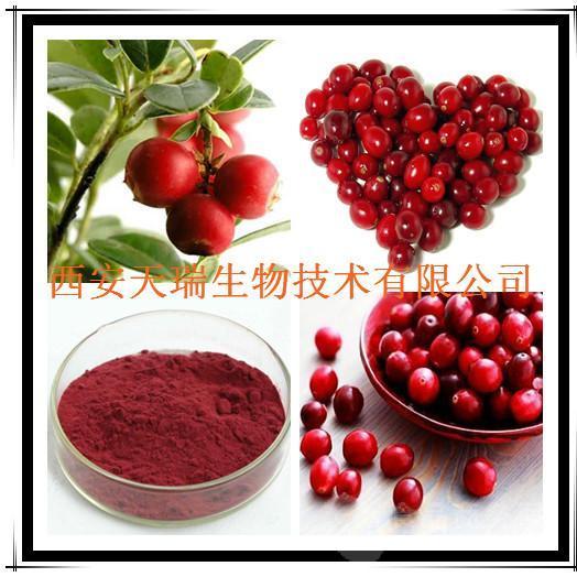 蔓越莓果粉 速溶蔓越莓粉 SC认证
