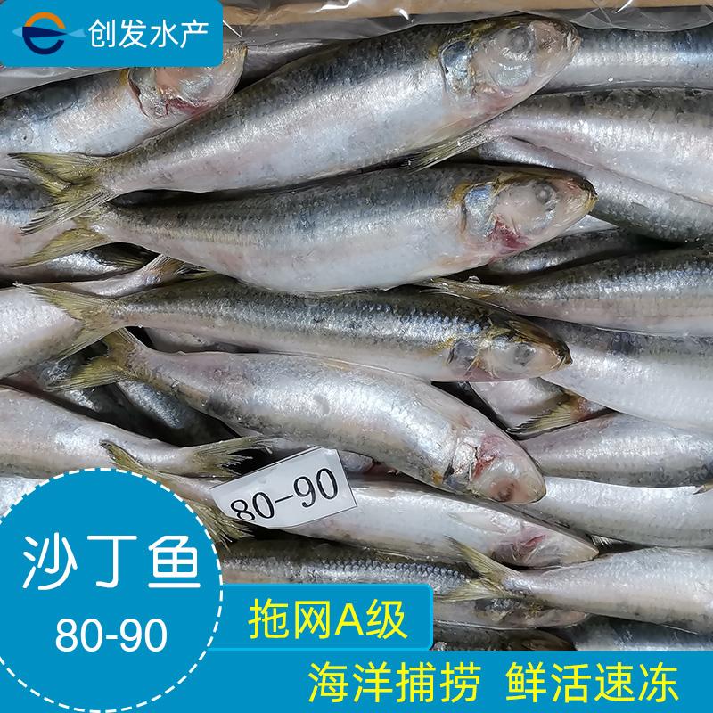 冷冻水产拖网海捕速冻沙丁鱼鳁鱼A级80-90条沙鲻冻货冷冻品产地货