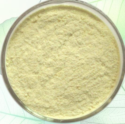 食品级玉米低聚肽生产