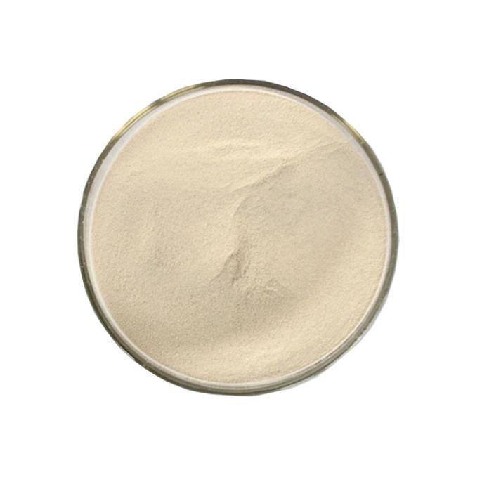 仟盛食品级香菇风味酶 食用菌风味提取酶 火锅生产供应