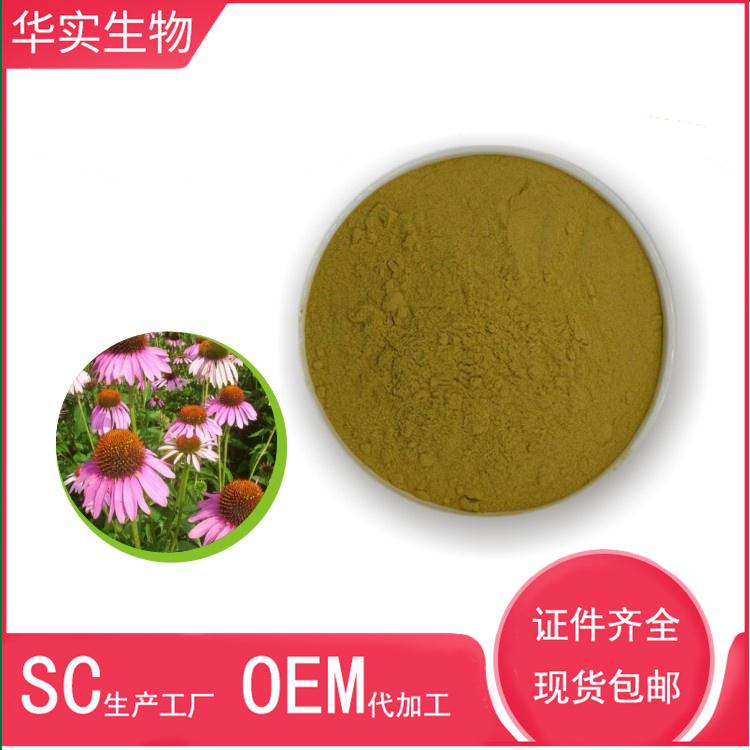 紫锥菊提取物10:1 紫锥菊多酚 菊苣酸 源头厂家 1000克现货包邮