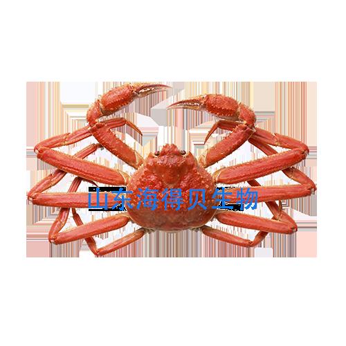 蟹殼,人類健康長壽之寶