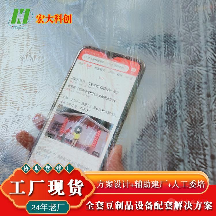 王中王豆皮机生产线 豆制品扶贫项目政策 自动烘干腐竹油皮机