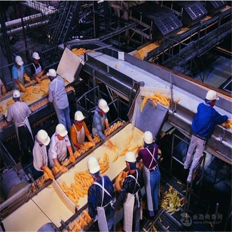新型速冻玉米棒生产线