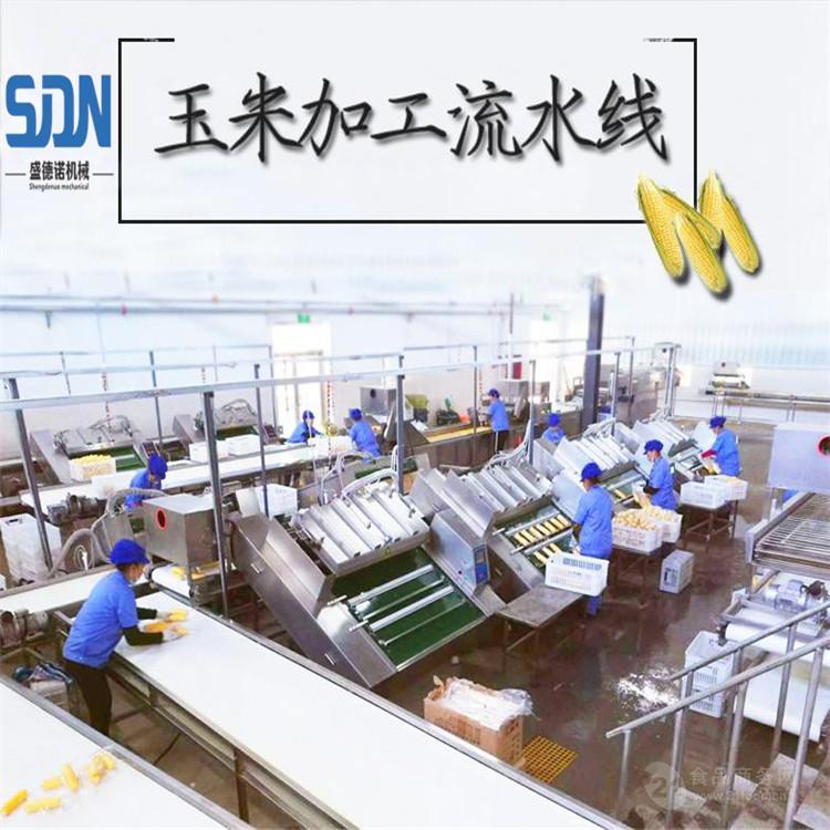 SDN真空包装玉米生产线