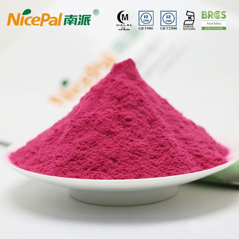 南派火龙果粉食品原料海南厂家直供水果粉冲调饮品固体饮料果蔬粉