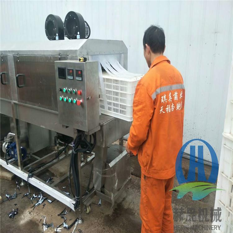 周轉筐清洗機 洗筐機廠家  水果框洗筐機
