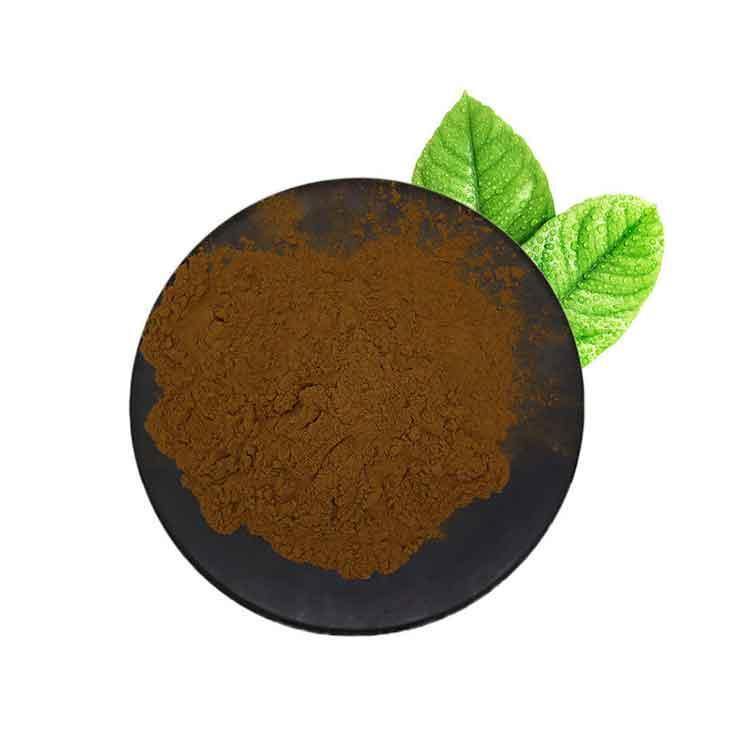 直销原花青素98% 葡萄籽提取物 原花青素OPC 葡萄籽成分