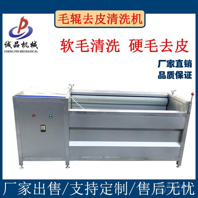 全自动果蔬气泡清洗机 商用水果蔬菜清洗机 气泡喷淋洗菜机设备