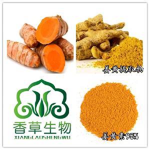 姜黄素95%着色剂 姜黄提取物水提 姜黄萃取原料食品级