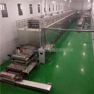 封闭式加工生产的红薯粉条生产线 水晶粉丝机设备 免晾晒