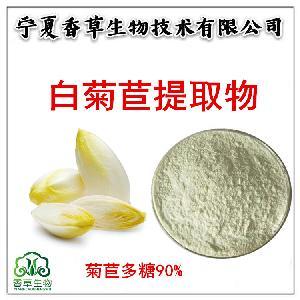 白菊苣提取物 白菊苣粉供應 玉蘭菜粉 白菊苣膳食纖維粉 菊苣多糖