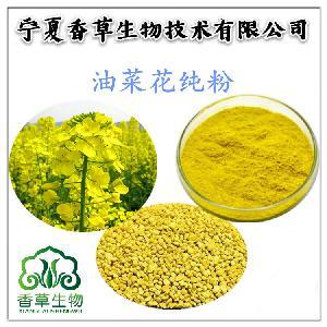油菜花粉供应 青海油菜花粉 破壁粉油菜花粉