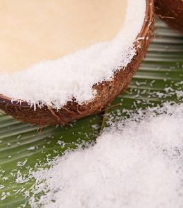 海南大型椰蓉生產廠家,專業椰子系列原料供應