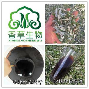 沙棘叶提取液 宁夏沙棘叶流浸膏1.0-1.3 沙棘叶浓缩液产地