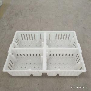 鸡苗运输筐塑料鸡苗箱育雏鸡苗鸭苗周转箱
