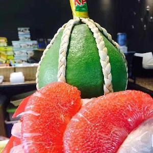 泰国红宝石青柚苗
