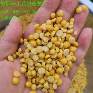 食品廠用黃豆脫皮機產量500kg至50噸成套大豆去皮機