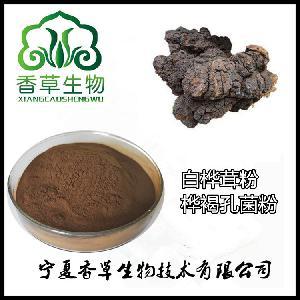白桦茸粉 厂家批发桦褐孔菌粉价格  白桦茸多糖粉
