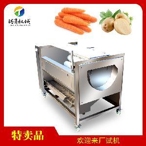 TS-M600型瓜果清洗機 中型土豆清洗機 紅薯清洗機廠家