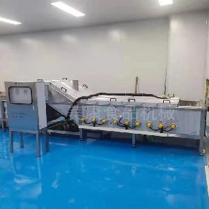 厂家生产净菜加工漂烫流水线 绿色蔬菜保鲜清洗杀青设备