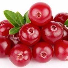 蔓越莓果汁粉
