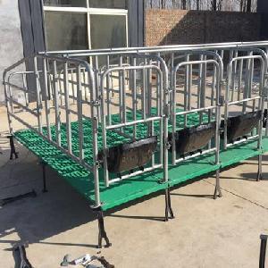 加厚母猪定位栏猪用限位栏母猪围栏猪栏设备猪床定位栏
