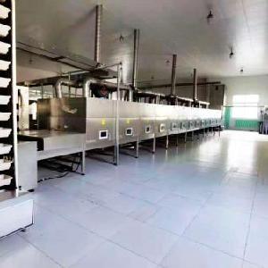 大型带式微波干燥设备生产厂家