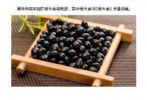 熟青仁黑豆粉 绿芯黑豆粉五谷杂粮代餐粉 80-150目 OEM