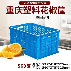 560塑料花椒筐蔬菜水果筐错位筐