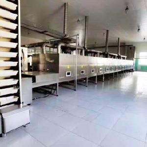 工業微波糧食加工設備生產廠家